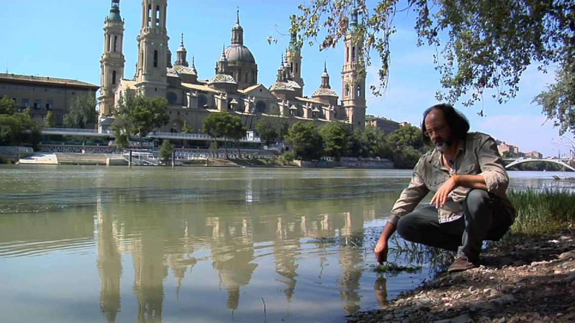 Luis Miguel Domínguez nos lleva al río