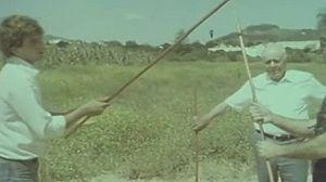 El juego del palo canario