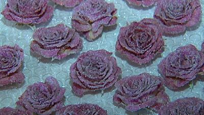 Flores �comestibles!