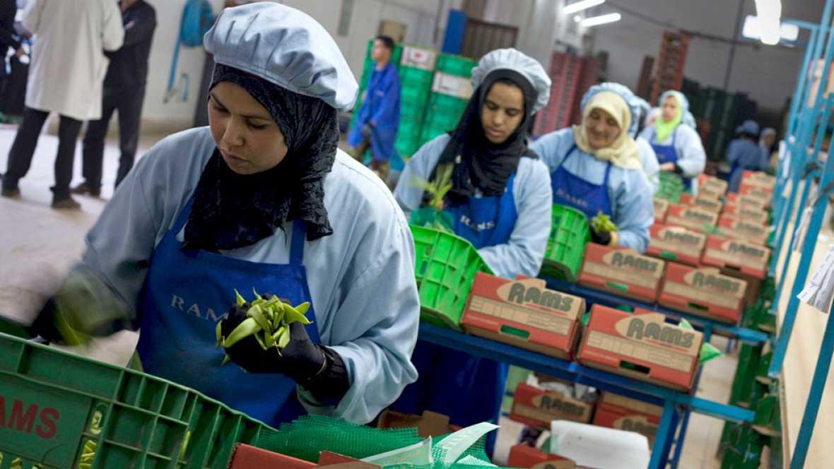 El Tribunal de Justicia de la UE anula la aplicación del acuerdo comercial con Marruecos en el Sáhara occidental