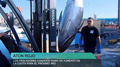 + Canarias - 14/12/2015
