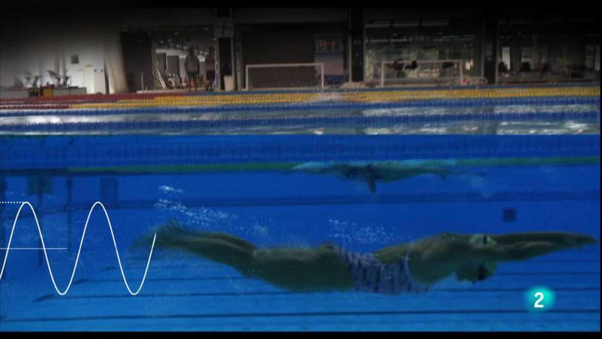 animalades -  Mar: Mireia Belmonte ens ensenya a nadar com un dofí