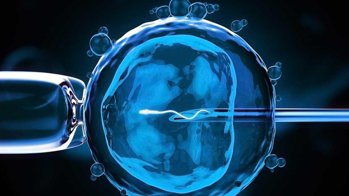Reino Unido autoriza a un grupo de científicos la modificación genética de embriones humanos