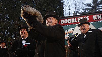 La marmota 'Phil' pronostica el adelanto de la primavera en 'El día de la marmota' de Filadelfia