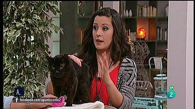 A punto con La 2 - Animales en casa - Toxoplasmosis y embarazo