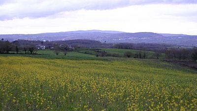 A vista de p�jaro - Lugo