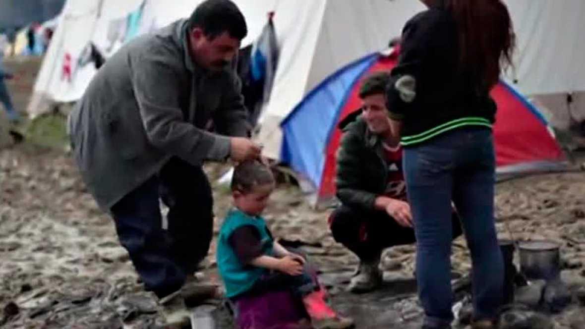 Raparse para evitar los piojos en Idomeni