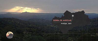 Red Natura 2000 - Sierras de Andujar (Ja�n)