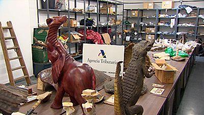 Un almacén de animales disecados en el aeropuerto de Barajas