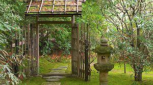 Japón. El regreso a las raíces