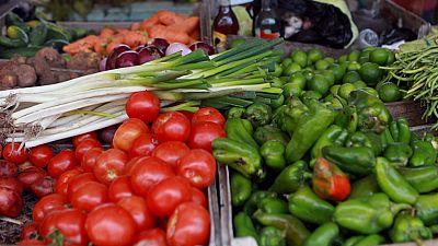 La agricultura marroquí, un jugoso mercado para los españoles
