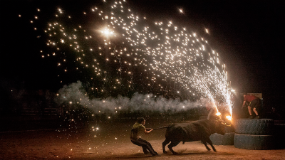 Documenta2016: Santa fiesta, de Miguel �ngel Rolland