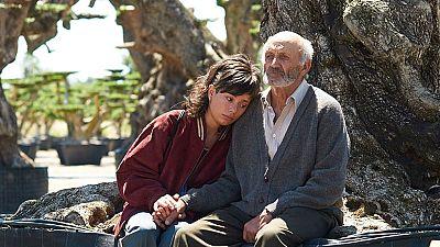 D�as de cine - El olivo