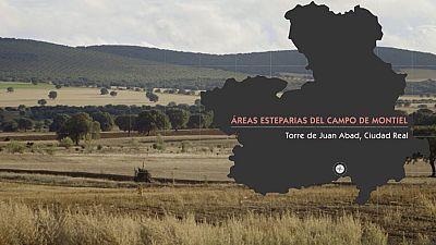 Red Natura 2000 -  �reas Esteparias del Campo de Montiel