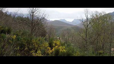 Red Natura 2000 - Picos de Europa