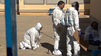 Dos colegios de Sevilla han tenido que cerrar sus puertas debido a una plaga de pulgas