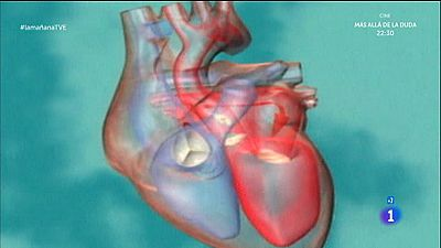 Peso y salud del coraz�n