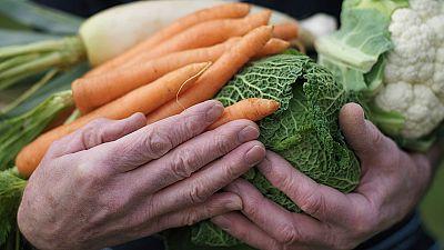'Foodcoaching', la nueva tendencia para cambiar hábitos alimentarios