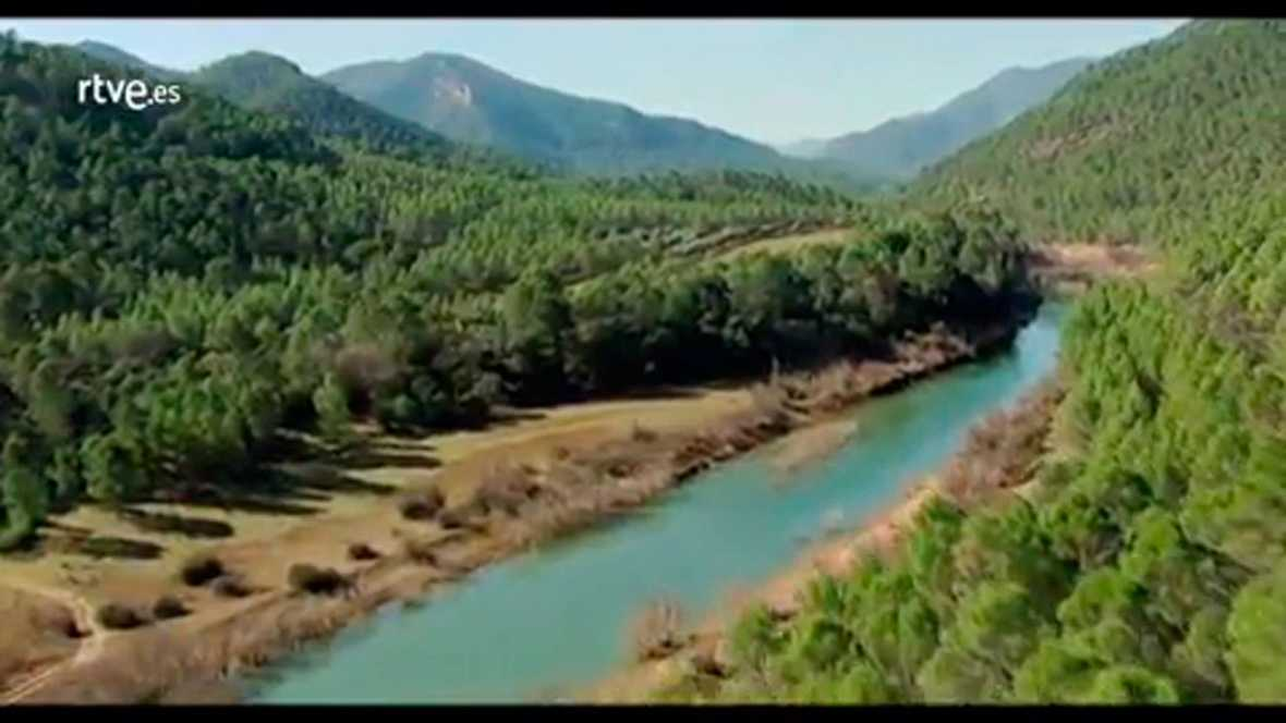 Cine Low Cost: 'Manzanares'