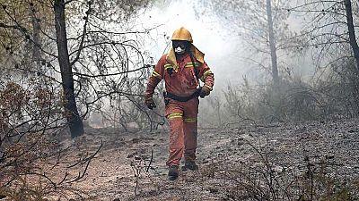 Siguen activos cuatro incendios en Valencia
