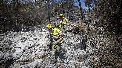 El peor de los incendios de Carcaixent podría quedar estabilizado en pocas horas