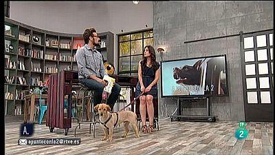 A punto con La 2 - Animales en casa - Los perros y el calor