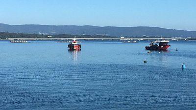 Preocupaci�n en Galicia por el mejill�n