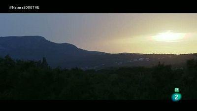 Red Natura 2000 - Aiguamolls d l'Alt Empord� - Jordi Sargatal. Camping Mascort