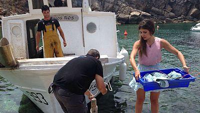 Adopta a Marta: en busca en langosta