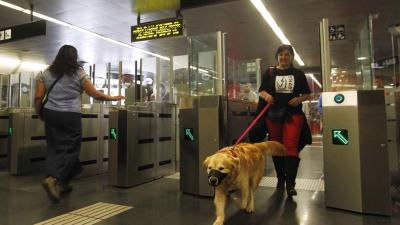 Los perros pueden viajar en el Metro de Madrid