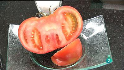 La Aventura del Saber. Armon�as: Tomates