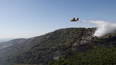 Estabilizados los incendios forestales del Campo de Gibraltar, en Cádiz