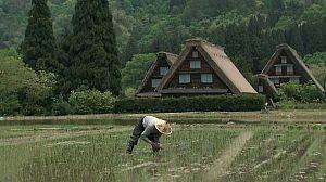 Patrimonio de la Humanidad:Aldeas de Shirakawa-Go y Gokayama