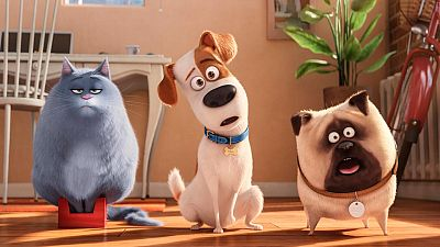 RTVE.es os ofrece un clip en primicia de 'Mascotas', de los creadores de 'Gru, mi villano favorito'