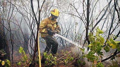 Regresan a sus casas los 310 vecinos desalojados por el incendio de Blanes