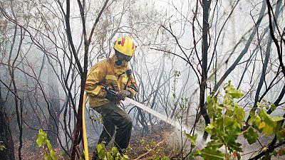 En Blanes los agentes rurales evalúan las consecuencias de un incencidio que ha quemado casi 27 hectáreas