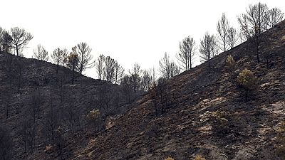 Medios aéreos y terrestres logran estabilizar el incendio de Artana, en Castellón