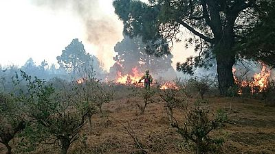 El incendio de La Palma ha arrasado más de 3.000 hectáreas y obligado a desalojar a 2.500 personas