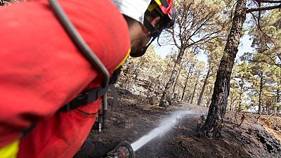 Los equipos de emergencias trabajan por cuarto día para controlar en incendio en La Palma