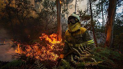 Cuatro incendios sin control preocupan en Galicia por estar cerca de núcleos de población
