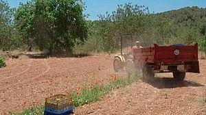 Jordi Serra, agricultor ecológico
