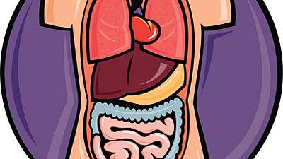 Saber Vivir - Digesti�n, h�gado y ves�cula