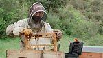 Red Natura 2000 - Historias:   Rubén,  apicultor