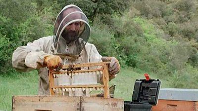 Red Natura 2000 - Historias:   Rub�n,  apicultor