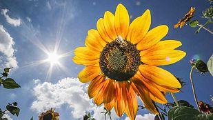 Bajan las temperaturas en Galicia, Asturias y Canarias