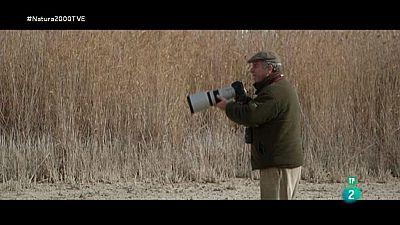 Red Natura 2000 - L'Albufera - Luc�a Moreno. Filtros verdes El Tancat