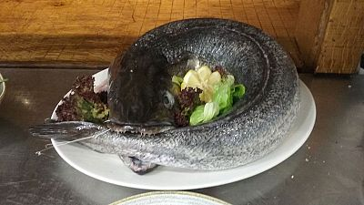 Un d�a en el Basque Culinary Center