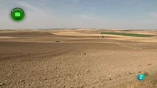 Agrosfera En Clave Rural - Nava del Rey y Alaejos