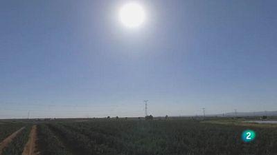 Agrosfera - Laboratorio de ideas - Drones en Andalucía