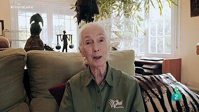 Órbita Laika - Superstars de la ciencia - Jane Goodall
